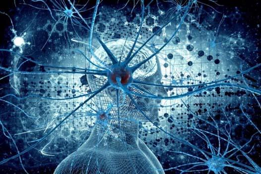 нервной системы