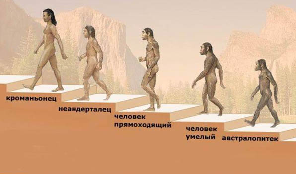 Происхождение человечества
